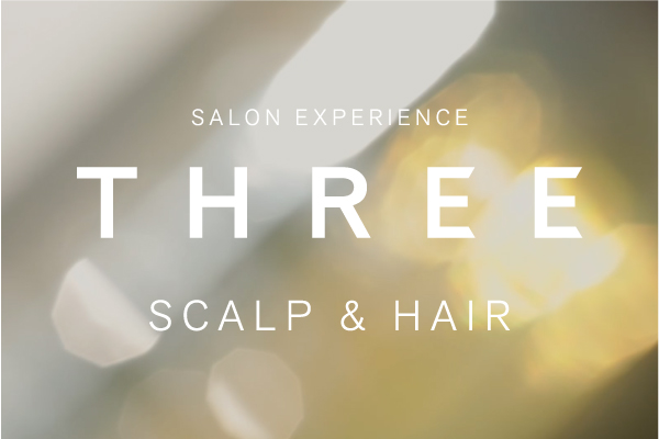 SALON EXPERIENCE </br>THREE SCALP & HAIR