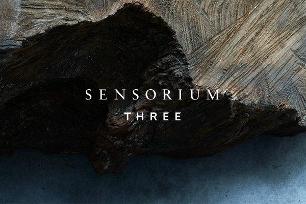 SENSORIUM THREE OPEN