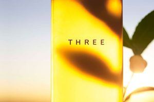 THREE<br>BALANCING CLEANSING OIL